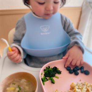 幼児食の記録