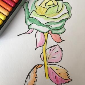 花のイラスト ラバ  心の自由へ