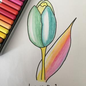花のイラスト   プッリーュチ