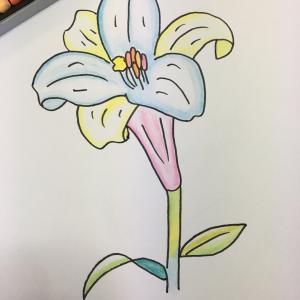花のイラスト  リユ