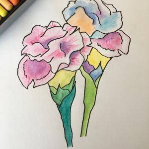 花のイラスト  ンョシーネーカ