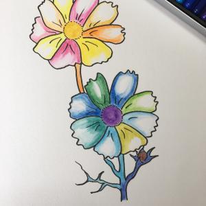 花のイラスト スモスコ