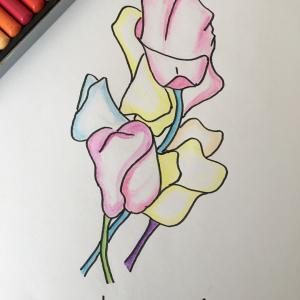 花のイラスト   ーピトーイス   心の自由へ!