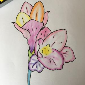 花のイラスト   アジーリフ   心の自由へ!