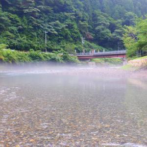 7月17日 上桂川 鮎釣り14