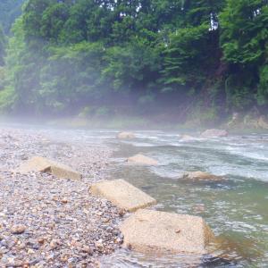 7月26日 上桂川 鮎釣り17