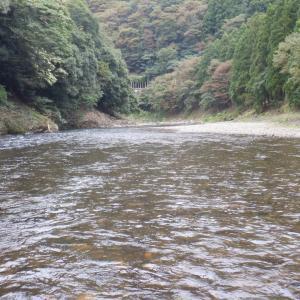 9月25日 南川 鮎釣り27
