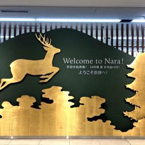 奈良ホテルへ 樫舎のかき氷