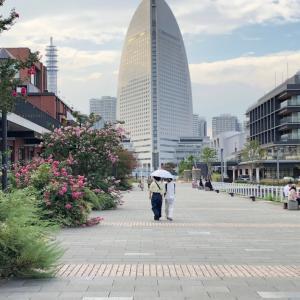 インターコンチネンタル横浜ピア8⑧周辺散策&テラスで南国気分満喫!