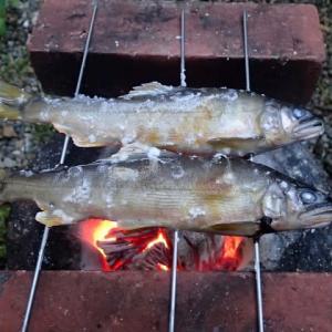 秋刀魚のために
