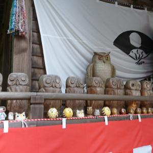 通称「フクロウ神社」の鷲子山上神社に行ってきました!