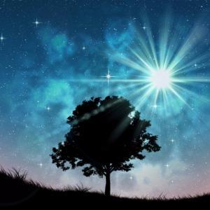 ライオンズゲート~今、高次の宇宙エネルギー(愛)に、より近い波動状態に近づくチャンス!~