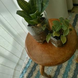 ダイソーの子供用パイプ椅子を木目調にペイントしてみた。