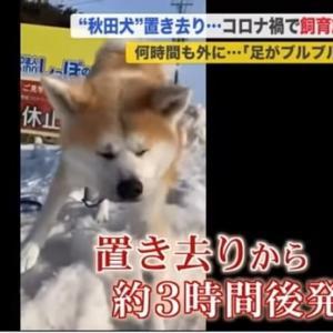 「北海道の真冬の寒空に飼い犬を置き去りに・・・・・」