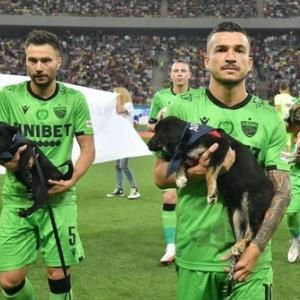 「保護犬の里親探しをサッカーで支援! ルーマニアでサッカー選手が保護犬を抱えて入場する」