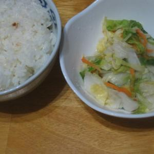 白菜の漬物最終章