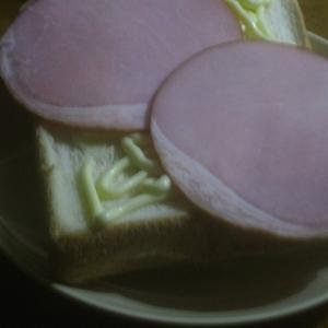 堅焼きオーブントースター