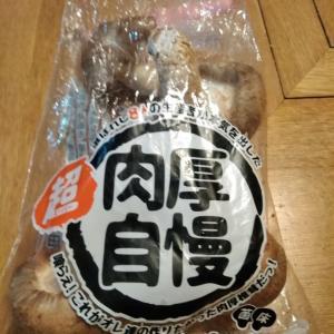 【肉厚自慢】徳島産生椎茸!