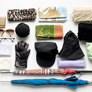 服飾小物の数(多すぎる件)