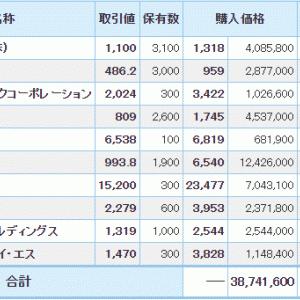 マイナス7110万円_| ̄|●