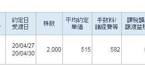 WTI原油価格連動型上場投信2000株ナンピン