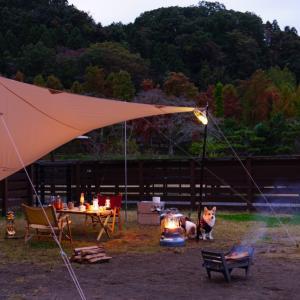 晩秋のおキャンプ~ストーブの真骨頂!~②