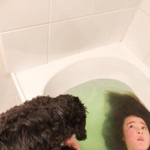 お風呂好き