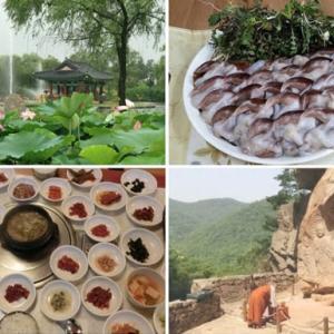 「韓国地方旅の楽しみ方」講座 延期のお知らせ