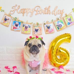 #めいちゃん、Happy Birthday!!!