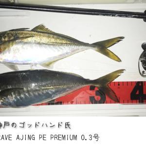 レベ友 ゴッドハンド氏 PE0.3号で鯵37cm!!!