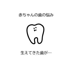 【閲覧注意】生えてきた赤ちゃんの歯が白濁していて心配…