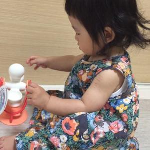 分解できる!水車のおもちゃが魅力ありすぎた話トイローヤル(サニーパークFXシリーズ)