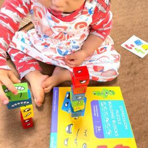 謎のカード&積み木ゲームが地味に楽しいぞ。