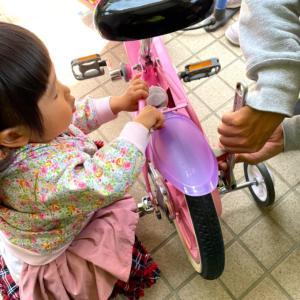 次女、自転車を手に入れるの巻!補助輪orストライダー問題