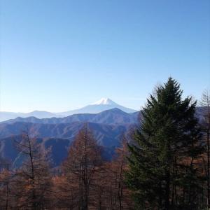 東京都で最も高い山へ 雲取山と石尾根縦走路の山々(5)