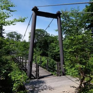 尾瀬の森と湿原巡り 燧裏林道・赤田代・ヨッピ吊橋(6) 裏燧橋