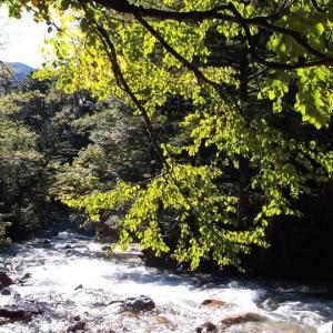 北アルプス 槍ヶ岳から笠ヶ岳へ(3)