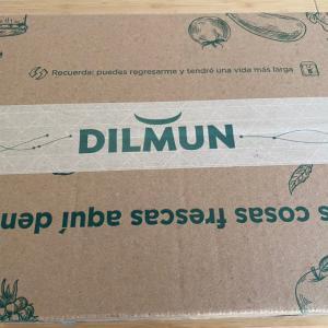 ネットスーパーDILMUNから野菜届きました!