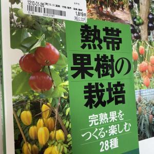 2000円→25800円のウマウマ商品♪