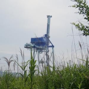 草原に巨大キリンが…