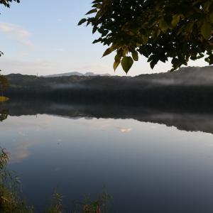 静かに明けた森の湖畔