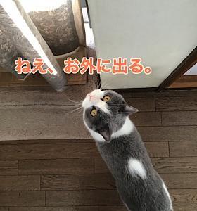 「また3連休」9/21sat
