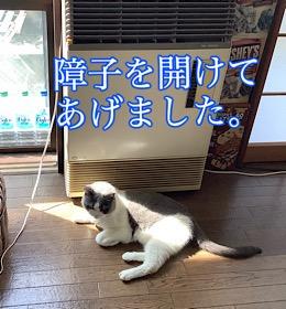 「贅沢してます☆」8/12wed