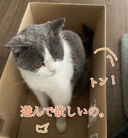 「ひまなのよ☆」9/7mon