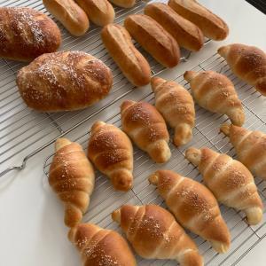 ソフトフランス・ドッグパン・塩バターロール
