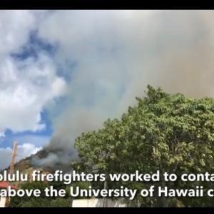 遂にハワイも山火事だそう!