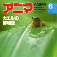 アニマ 特集<カエルの博物誌> No.111(1982年6月号)
