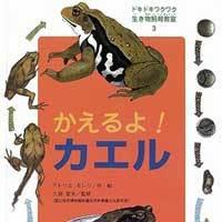 かえるよ!カエル(ドキドキワクワク生き物飼育教室3)