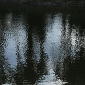 西池200712-4