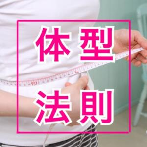 【保存版】キレイに見える体型の法則